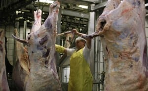 Iranian investors launch largest slaughterhouse in Armenia