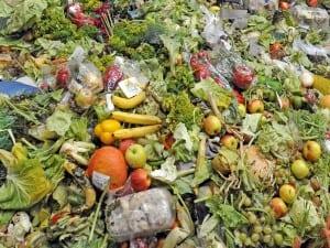 foodwaste-blog-300×225